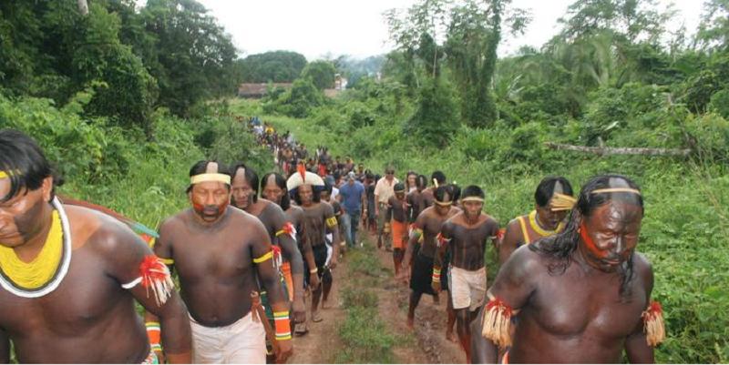 indigenas covid