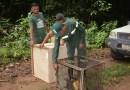 Mais de 500 animais silvestres são reabilitados por Zoológico