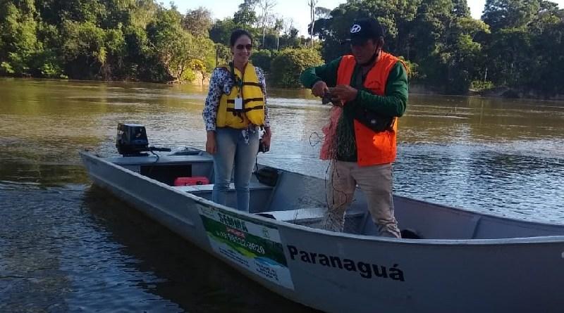 Peixes estavam presos a rede foram soltos (Foto:Ascom SEMMA-NP)