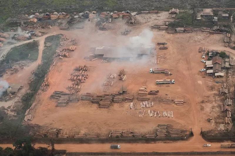 Vista aérea de madeira cortada da Amazônia perto de Porto Velho 14/08/2020 REUTERS/Ueslei Marcelino Foto: Reuters