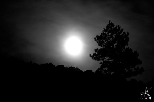 Per la luna… Il connubio Pippi Cesari-Nicola Greco