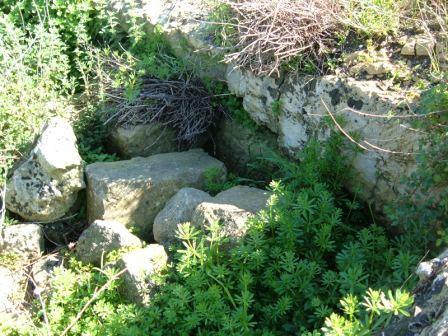 Fig. 6 – Porzione di cisterna ricolma con le rovine della masseria
