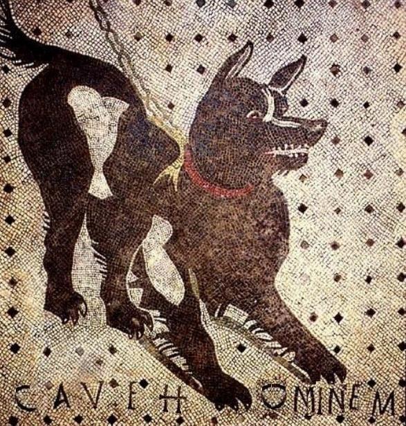 rielaborazione personale del celebre cave canem pompeiano
