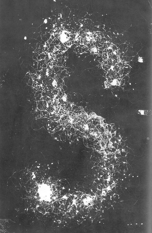 I capelli di Milvia - La lettera esse (tutte le lettere devono essere costruite sull'acqua ribaltate)