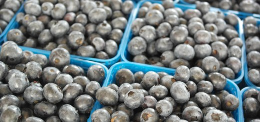 Tan Childs Blueberries