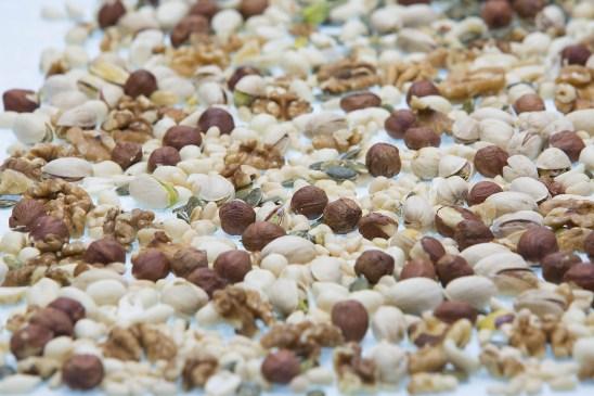 Various-nuts-small.JPG