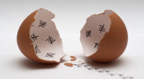 funny-broken-egg-chicken