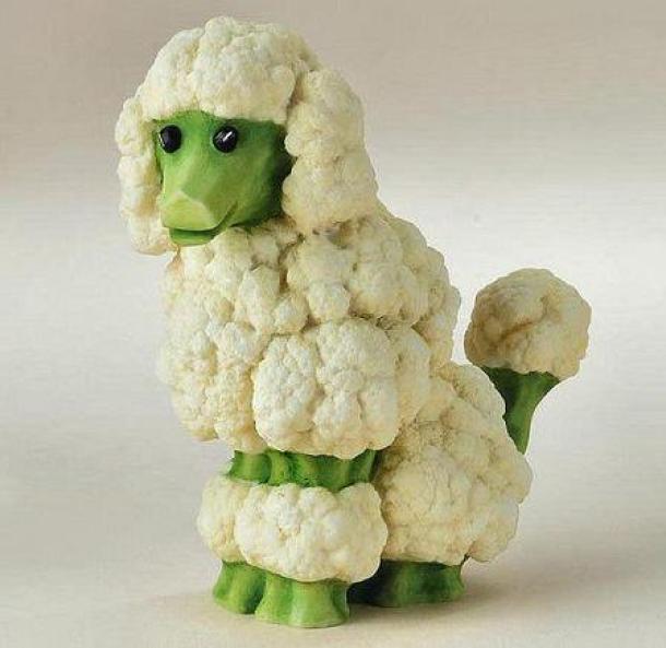 cauliflower-broccoli-dog