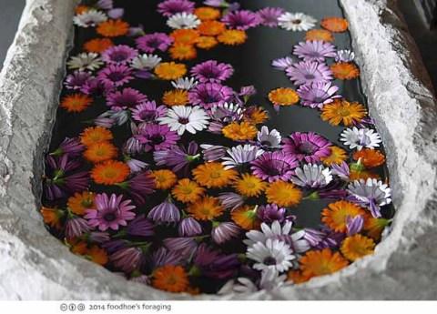 rbh_flowers