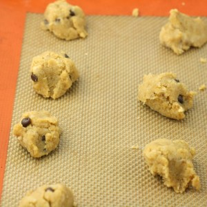 Chocolate Chip Coconut Flour Cookies (Vegan/Paleo/Grain Free)