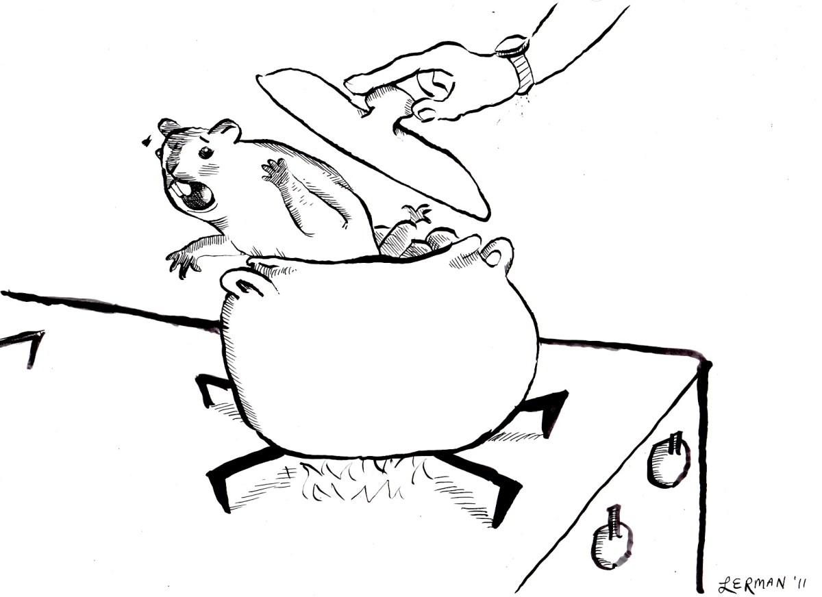 Braised Groundhog Recipe   Food Republic