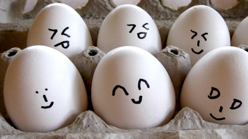 rotten eggs
