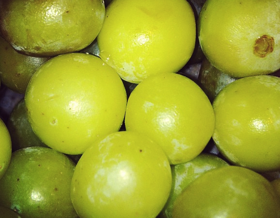 Hack Of The Day: Frozen Grapes Keep Wine Perfectly Chilled