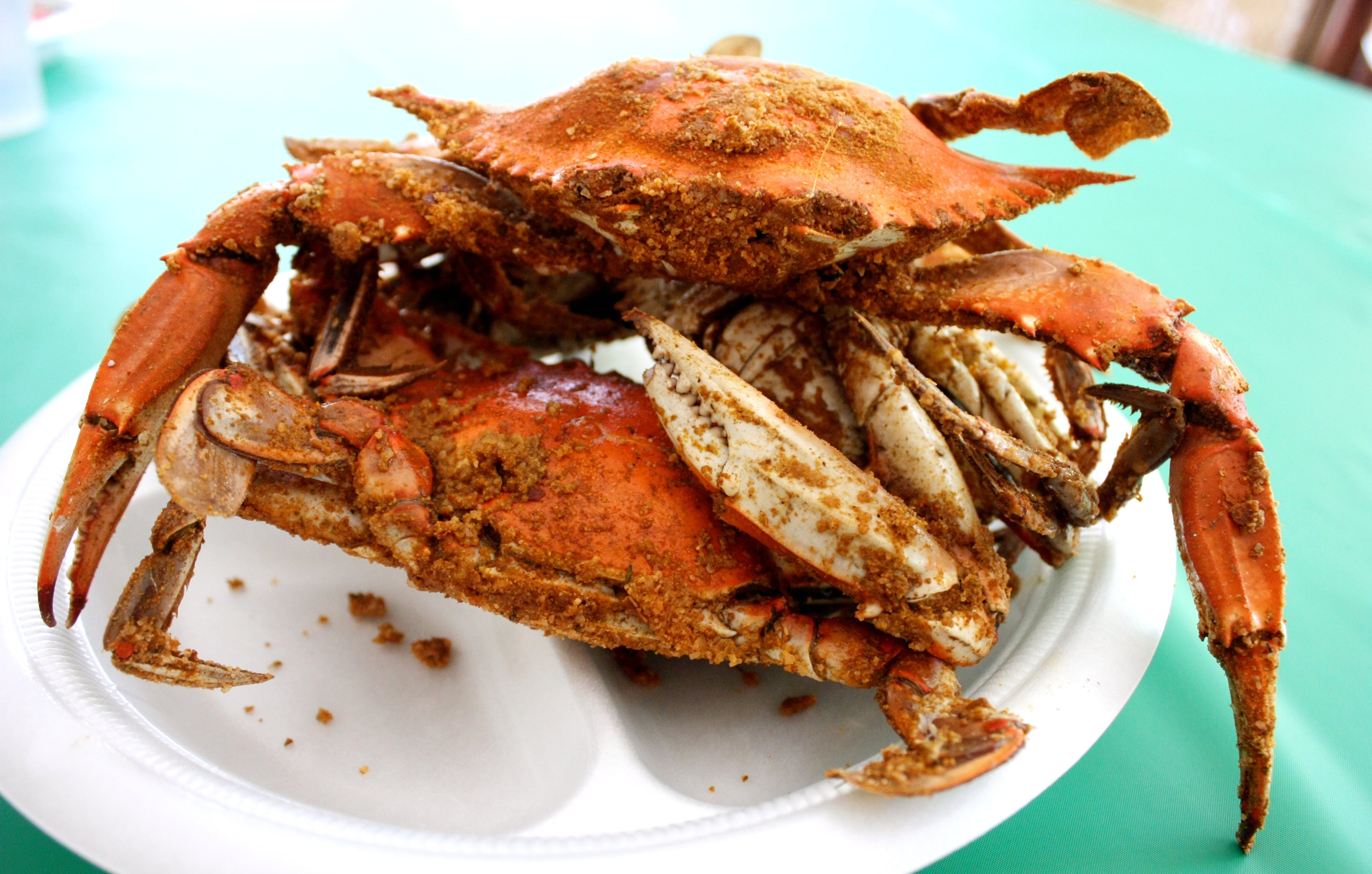 How To Cook A Proper Blue Crab FeastFood Republic