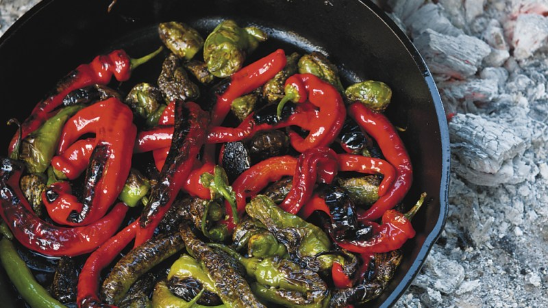 CharredPadronpeppers