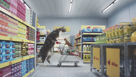 This German commercial features a cat-sized supermarket.