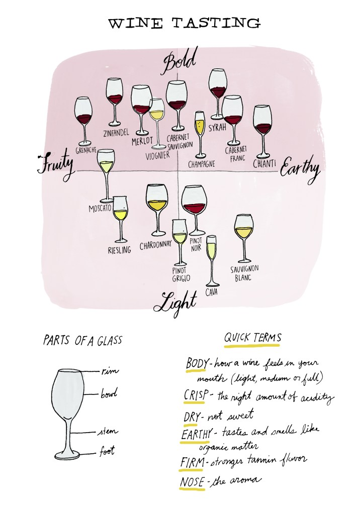 Check Out This Illustrated Crash Course In Wine Tasting - Food Republic