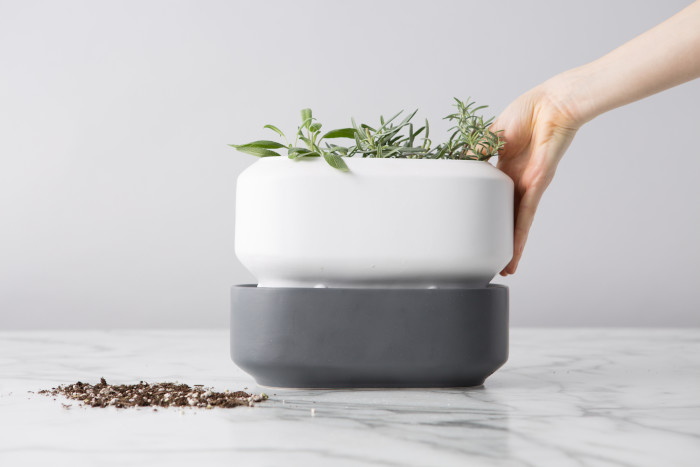 herbpot