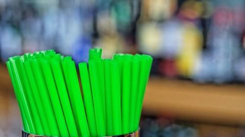 plastic straw ban