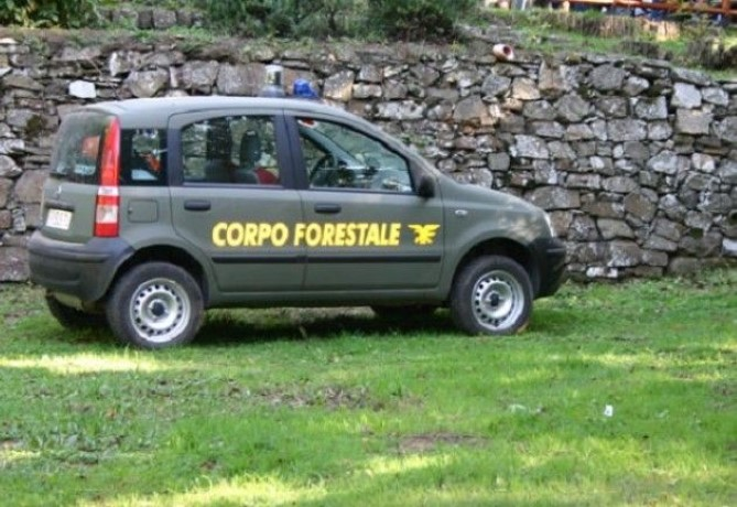 f1_0_la-polizia-forestale-deve-rimanere-tale-a-ladina (Custom)