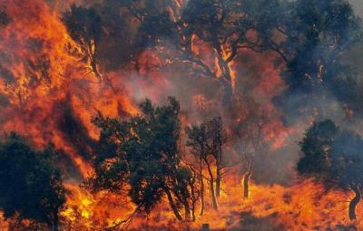 incendio_forestal