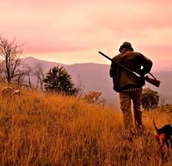 Il-territorio-montano-rende-la-caccia-allorecchiona-ancora-più-affascinante-