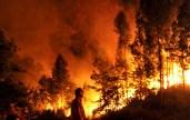2015-04-13-2014-12-11-incendio