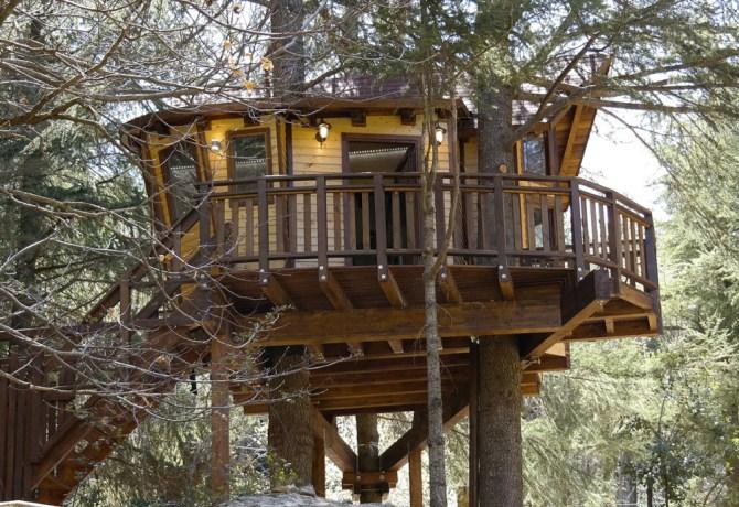treehouse-1024x687