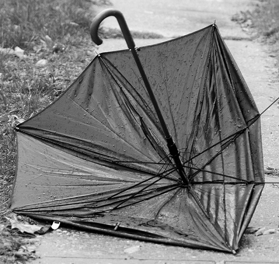 Broken Umbrella by Leslie Duss