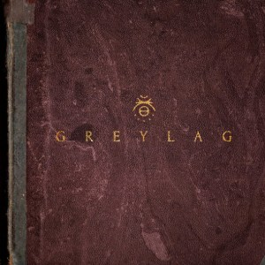 greylag