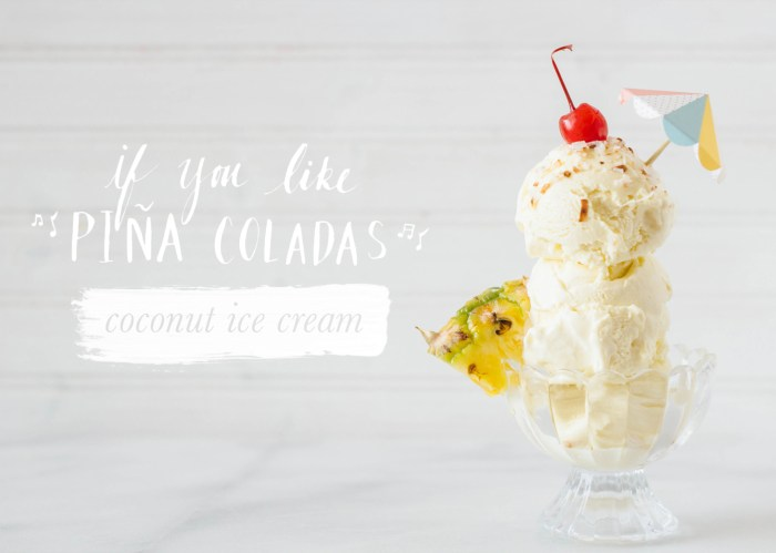 coconut ice cream pina colada fork to belly