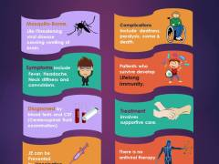 Facts on Japanese Encephalitis