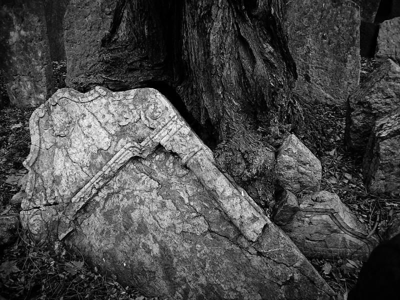 Textura en cementerio (jorge zeballos briones)