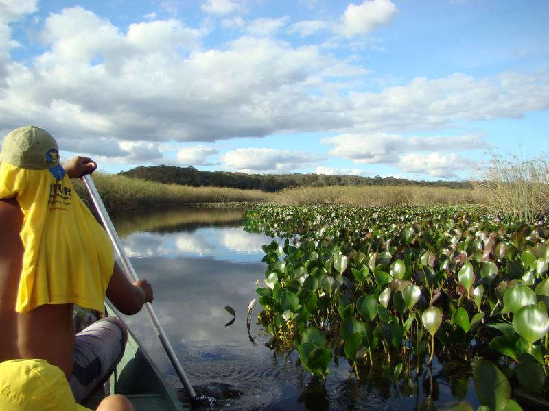 Paseo en canoa (Consuelo Oliveira)