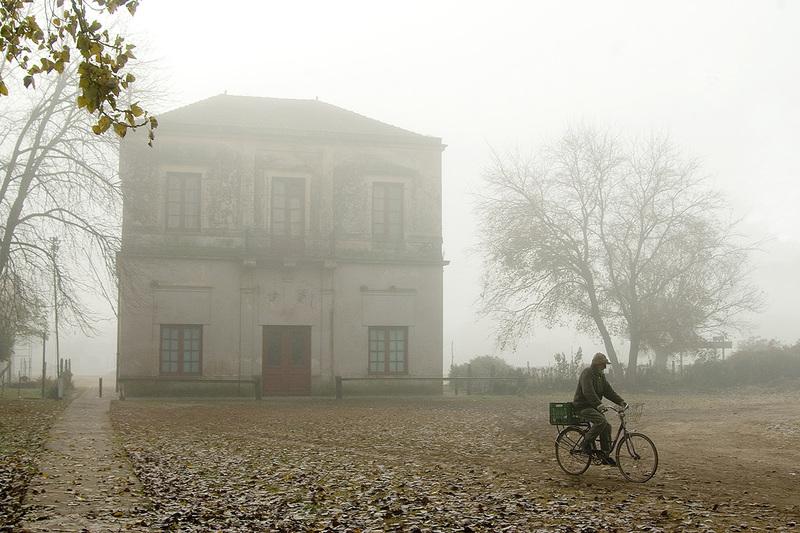 Niebla... (Oscar Cejas)