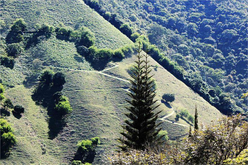 Caminos de montaña (Alberto García Cardona)