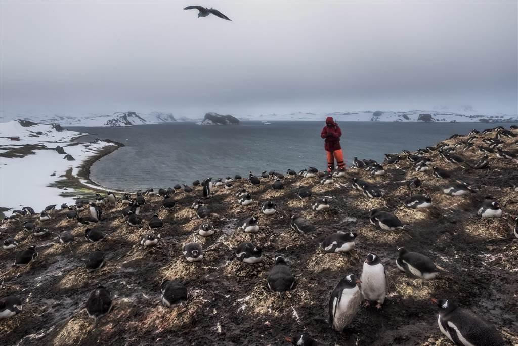 32, Daniel Berehulak for the New York Times, WPP via EPA, World Press Photo Awards Top Images of 2015