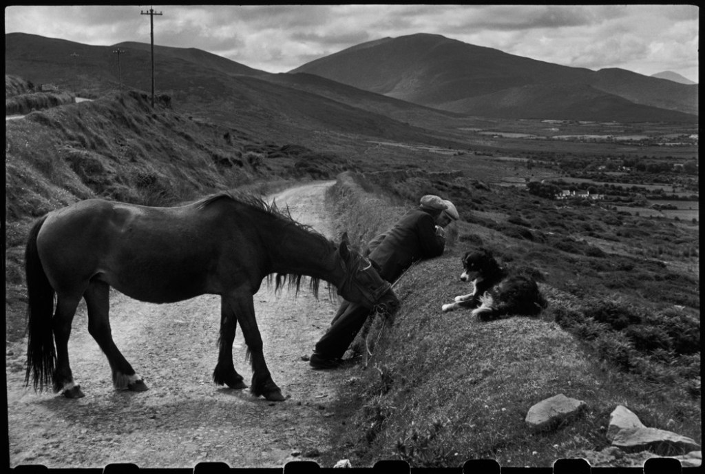 IRELAND. Munster. County Kerry. Dingle Peninsula. 1952.