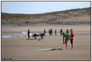 surf2016-32