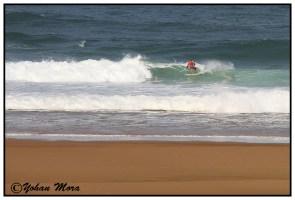 surf2016-39