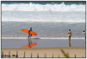 surf2016-61