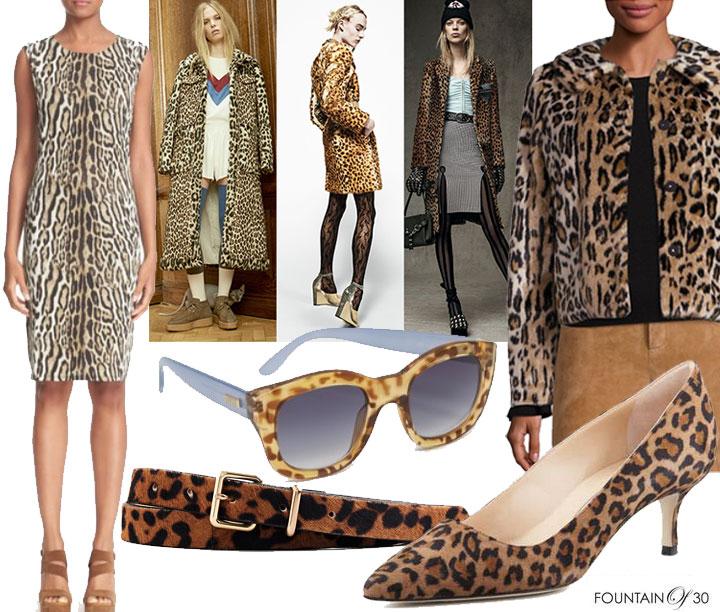 leopard-print-dress-runway-coats-jackrt-shoes-belt-sunglasses