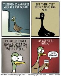 coffee's bitch