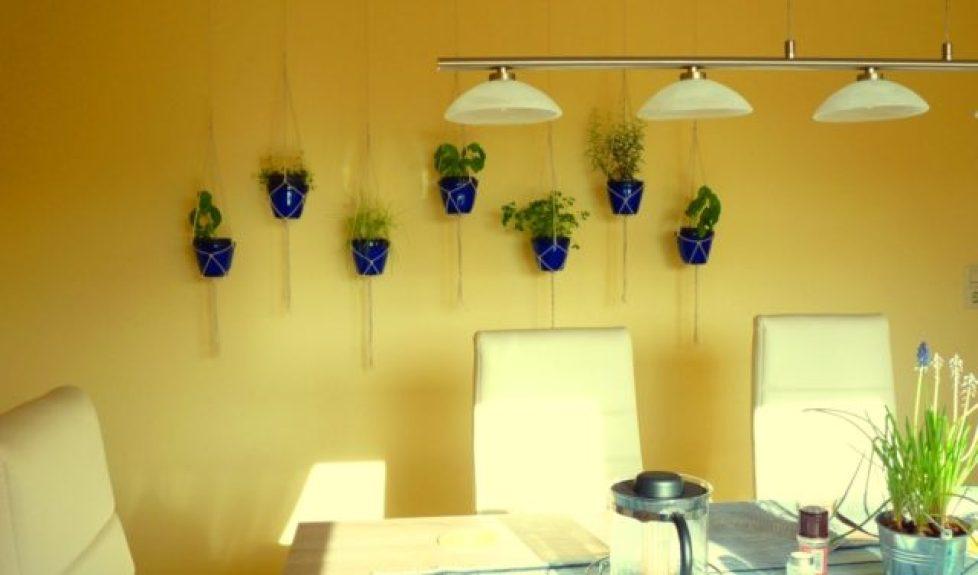 hanging herb garden.1