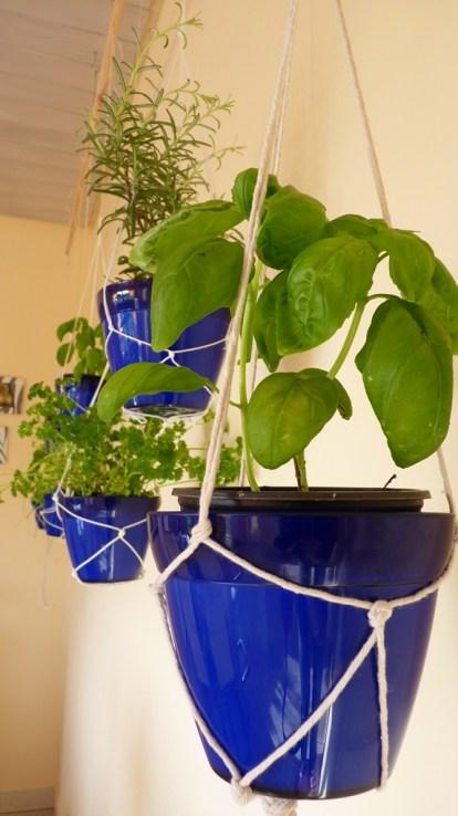 hanging herb garden7