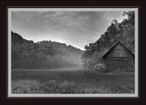 meadowfog.jpg