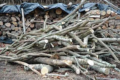 A pound of wood is a pound of wood