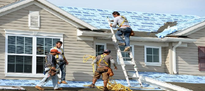 Image result for miami roof service