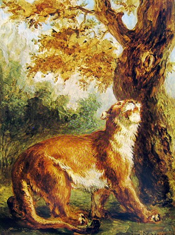 Eugène Delacroix: Puma