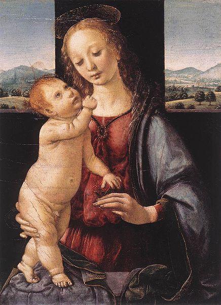 Lorenzo Credi: Madonna Dreyfus